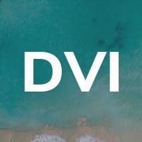 Danco Vision Interactive