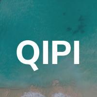 Quality Information Partners, Inc. (QIP)